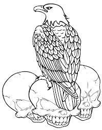 Coloring Sheets Of Bald Eagles Eagle Page Free Beautiful Nest