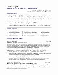 Construction Project Manager Resume Template 14 Elsik Blue Cetane