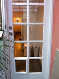 dog door in brighton east by ometek glass