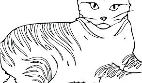 Blaze The Cat Coloring Pages The Cat Coloring Pages Blaze The Cat