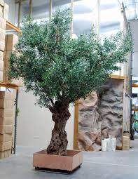 office tree. 4-metre Olive Tree Preserved Trunk Faux Branches \u0026 Canopy Office I