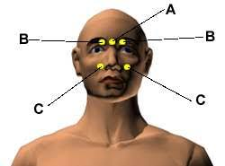 Headache Acupressure Points Chart Most Important Acupressure Points For Headache And Migraine