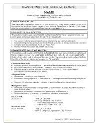 Resume Examples Skills Noxdefense Com