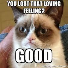 you lost that loving feeling? good - Grumpy Cat | Meme Generator via Relatably.com