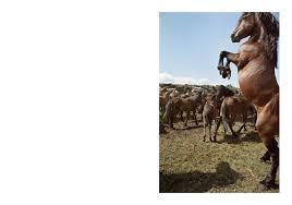 the trojan horse the trivial essays ediciones an atilde sup malas