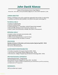 It Resume Templates Free Examples 28 Information Technology Resume