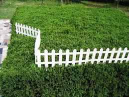 plastic garden fencing white