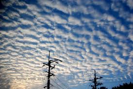 「秋の雲」の画像検索結果