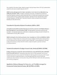 Proposal Template In Word Inspiration Simple Project Proposal Template Word Business Plan Template Excel