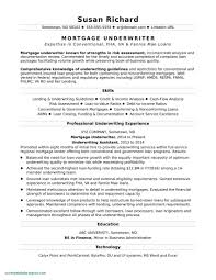Best Modern Resume Styles Modern Resume Templates Fresh Ms Publisher Resume Templates
