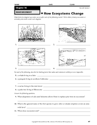 Macromolecules chart activity   Science for Secondary Grades additionally Terrestrial Biomes  Study Guide    AP Environmental Science as well  besides Science Worksheets Answers Worksheets for all   Download and Share additionally High School Environmental Science Worksheets   Switchconf together with Food Web Activity High School   Foodfash co in addition  as well Soil horizons worksheet to print  color  and label  For earth besides  likewise Quiz   Worksheet   The Environment in Urban Development   Suburban likewise . on high school environmental science worksheet