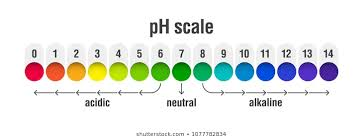 Acid Alkaline Balance Diet Chart Ph Balance Food Images Stock Photos Vectors Shutterstock
