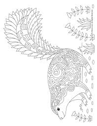 Skunk Adult Coloring Page Woo Jr Kids Activities