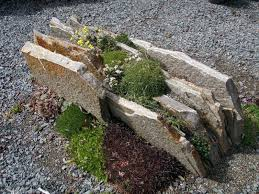 mini rock garden awesome landscape for trend and style mini rock garden