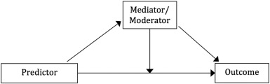 Moderator Vs Mediator Can A Mediator Moderate Considering The Role Of Time And Change In