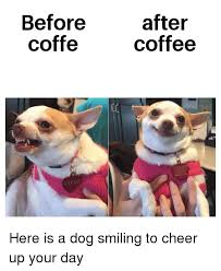 Who hates monday morning and every other day of the week, me! Before Coffe After Coffee Lily Lu Coffee Meme On Me Me