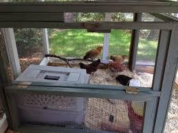454 Best Backyard Poultry Images On Pinterest  Raising Chickens Backyard Chicken Blog