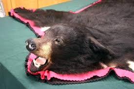 faux bear skin rug faux bear rug large size of winsome fake bear skin rug with