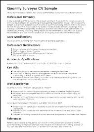 Professional Summary Resume Examples Student On Sample Of