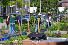 gateway greening members are individuals like you making a positive impact in st louis communities