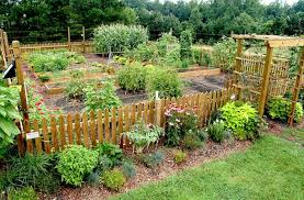 raised bed garden from a z what to