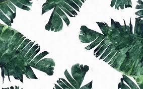 lit laptop wallpapers. banana leaves laptop background   banana-leaf - vancouver mom lit wallpapers d