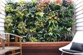 Vertical Kitchen Garden Garden How Refreshing With Vertical Garden In Our Ecofriendly