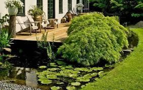 How To Design A Backyard Japanese Garden 9  GardensoJapanese Backyard Garden