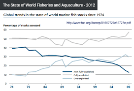 Dying Oceans Overfishing Seafood Consumption Plastic