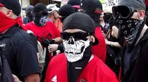 Image result for Domestic Terrorist
