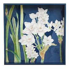 Rock Paper Flower Trays Rock Flower Paper Paperwhites Square Tray Trays Pinterest