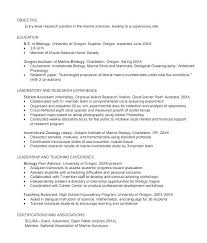 Professional Photographer Resume Wedding Photographer Resume ...