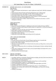 React Js Resume Angular js Resume Samples Velvet Jobs 1