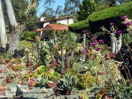 Succulent Garden Designs Inspiration Succulent Garden Designs Pictures Of Succulents Front Porch Ideas