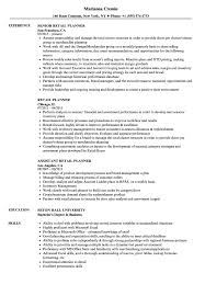 Resume Samples For Retail Retail Planner Resume Samples Velvet Jobs 10