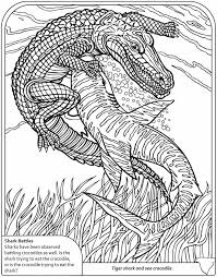 Small Picture 136 best Afrique images on Pinterest Drawings Coloring books