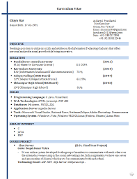Functional Resume Sample IT Internship Free Professional Resume Template.  Lecturer Resume Format For Computer Science ...