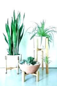 plant pot hangers stand indoor hanging exciting nz outdoor