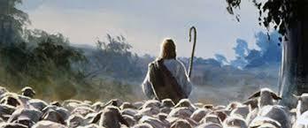 Image result for el buen pastor