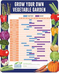 When To Plant Vegetables Chart When To Plant And Harvest Vegetables