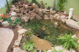 Pond Design Pond Design And Service Pittsburgh Pa Best Feeds Garden Centers