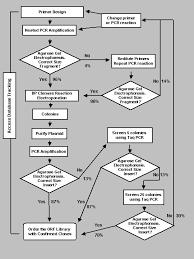 Functional Genomics Flow