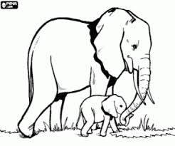 Kleurplaat Olifanten Moeder En Babyolifant Kleurplaten
