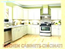 cabinet refacing orlando fl kitchen faucets inspirational kitchen cabinets in kitchen cabinet refacing cabinet makers home