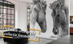 Behang Shopnl Thuisin Zoetermeer