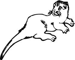 Bange Otter Kleurplaat Gratis Kleurplaten Printen