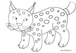 Disegni Da Colorare Categoria Animali Immagine Lince Infanziaweb