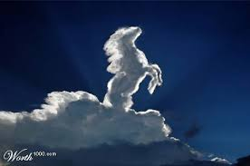 Cloud Photoshop The Coolest Photoshop Horse Pictures The Equinest