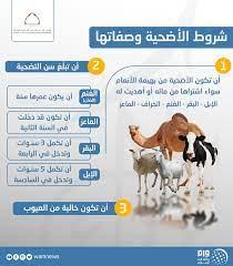 """وكالة أنباء الإمارات auf Twitter: """"شروط الأضحية وصفاتها #عيد_الاضحى #وام… """""""