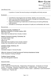 resume example human services copyright susan ireland pg1 sample criminal justice resume